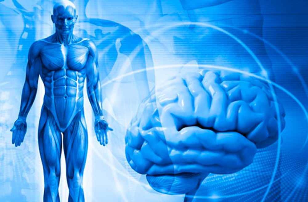 Психосоматика: что такое психосоматика и как лечить несуществующие болезни? informburo.kz