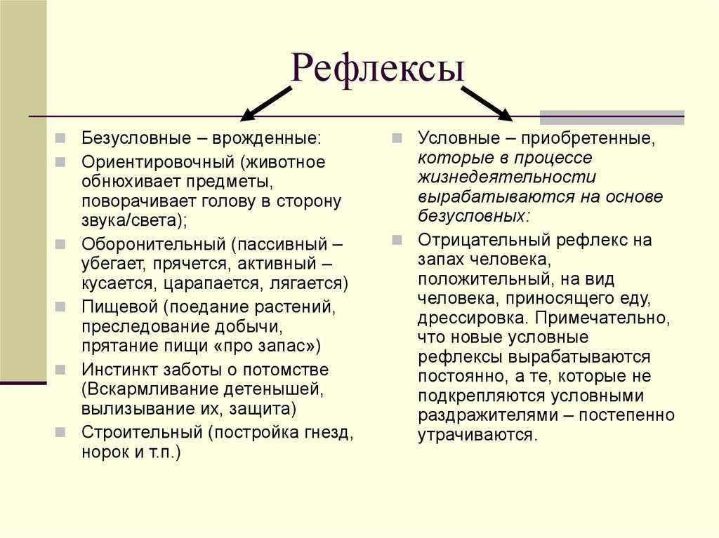 Рефлексы новорожденных (безусловные, условные, врожденные)