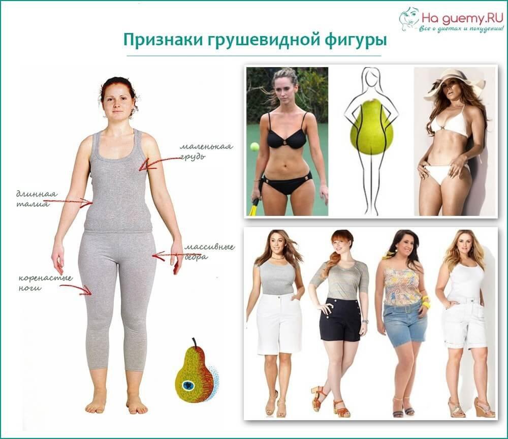 Типы женских фигур с примерами и описанием: как определить