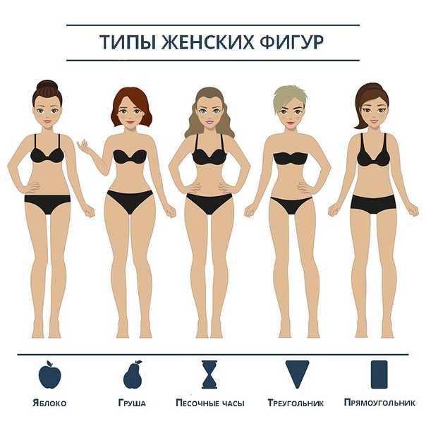 Типы женских фигур (телосложения) и тренировки для них