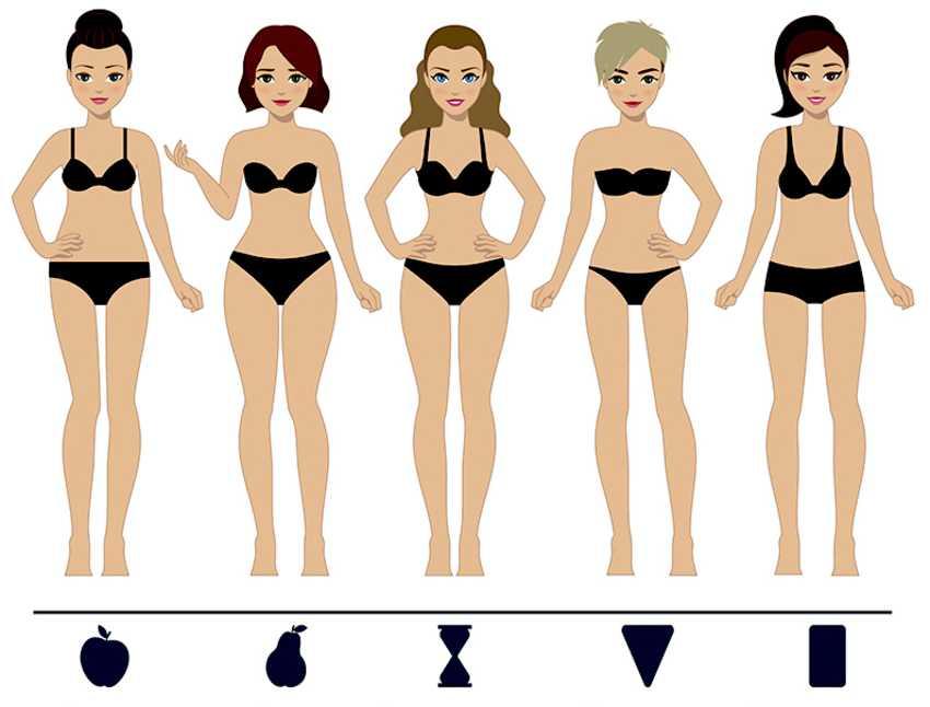 Типы женских фигур. это должна знать каждая девушка