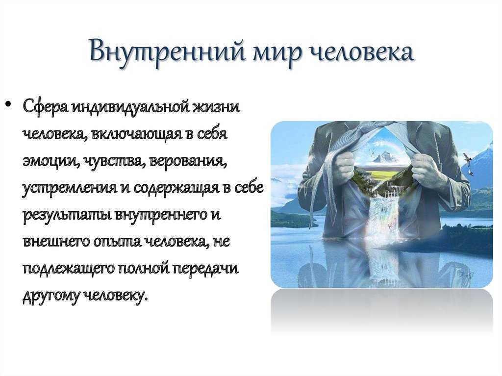 Основные признаки живого организма. основные признаки живой природы