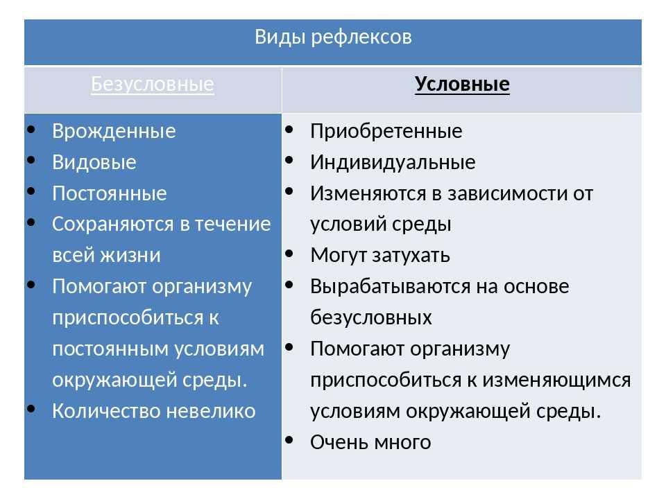 Врожденные рефлексы у человека: общая информация и занимательные факты