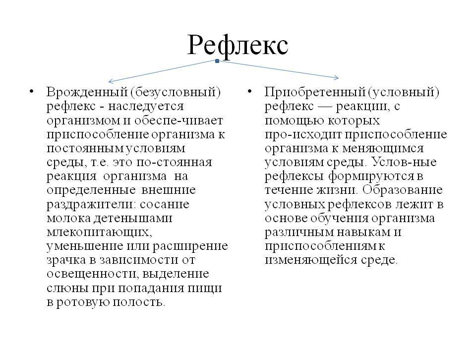 Образование условных рефлексов и их виды   условный и безусловный рефлекс   действие разных сигналов как раздражителя   образование рефлексов    net22.ru - сайт о психологии, социологии и философии.
