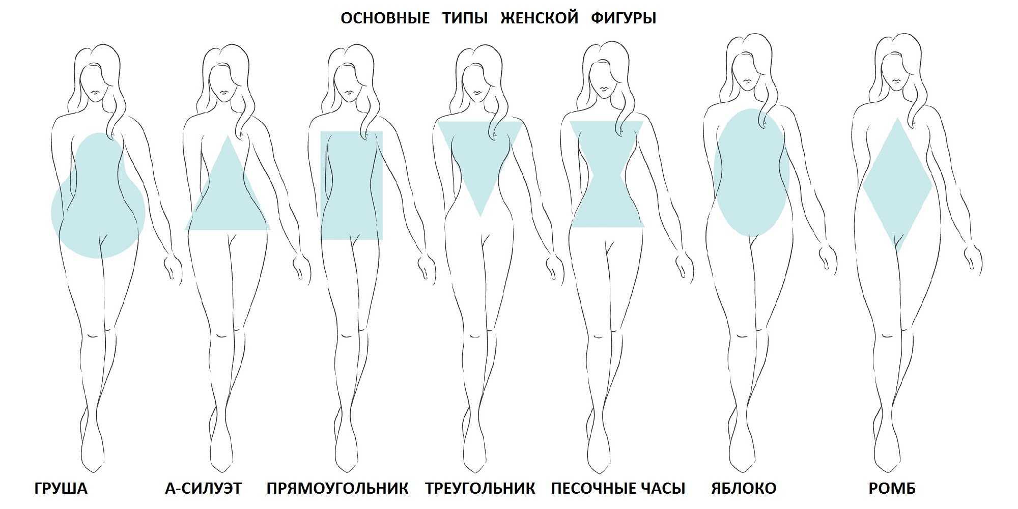 Типы женских фигур (телосложения) и тренировки для них | krok8.com - фундаментальная стратегия развития