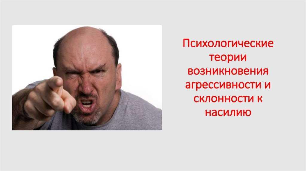 Агрессия. основные теории возникновения агрессивного поведения
